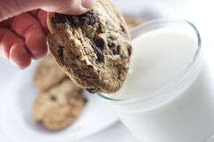 Het onderdompelen van koekje Stock Fotografie