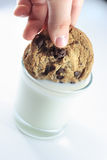 Het onderdompelen van koekje in melk Stock Foto's