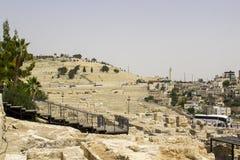 Het Onderstel van Olijven van de Zuidelijke Muur van Tempel dieMo worden gezien stock afbeelding