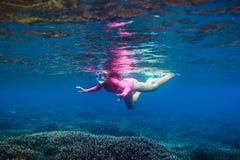 Het onderwater zwemmen in tropische oceaan Stock Foto's