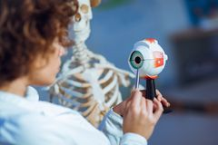 Het onderwijsanatomie die van de artsenvrouw menselijk oogmodel gebruiken Stock Afbeeldingen