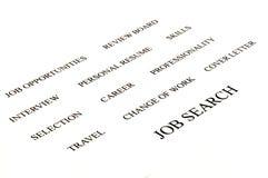 Het onderzoek van de baan Stock Afbeelding