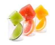 Het onderzoek van het voedsel - citrusvruchtenmengeling stock afbeelding
