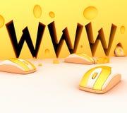 Het Onderzoek van het Web Stock Foto's