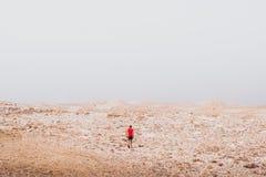 Het onderzoeken - het eenzame menselijke lopen in een rotsachtige woestijnvrijheid en van de van de avonturenlevensstijl en sport royalty-vrije stock foto's