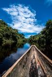 Het onderzoeken van de Wildernis van Amazonië stock fotografie