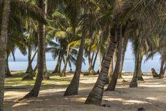 Het onderzoeken van klein Caraïbisch Eiland, San Blas Islands Royalty-vrije Stock Foto's