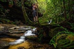 Het onderzoeken van weelderige groene gullys met stromende bergstromen royalty-vrije stock foto