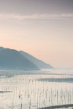 Het ondiepe overzees van Siapu en tidelands het werkmensen Royalty-vrije Stock Fotografie