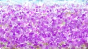 Het onduidelijke beeld bokeh behang van het lavendelgebied Royalty-vrije Stock Foto's