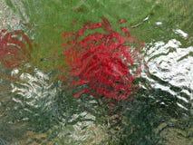 Het onduidelijke beeld van het gebrandschilderd glas Stock Foto