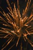 Het onduidelijke beeld van het vuurwerk Stock Foto