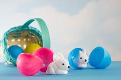 Het ongeval die Pasen vergen zonnebaadde in het land van cuteness Stock Foto