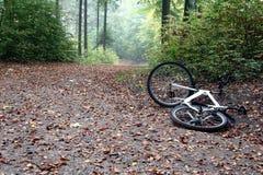 Het ongeval van de fiets Stock Fotografie
