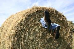 Het ongeval van de landbouw Royalty-vrije Stock Foto