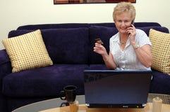 Het online winkelen van de vrouw Royalty-vrije Stock Afbeeldingen