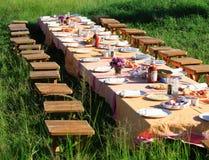 Het ontbijt van de struik Stock Foto's