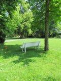 Het ontspannen bij parkbank onder een boom royalty-vrije stock fotografie
