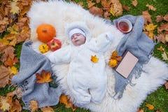 Het ontspannen in de herfstpark royalty-vrije stock afbeelding