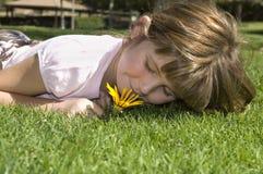 Het ontspannen in de zon Stock Afbeeldingen