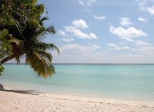 Het ontspannen maldivian strand Stock Foto