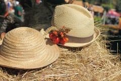 Het ontspannen op hayloft Royalty-vrije Stock Foto's