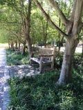 Het ontspannen parkbank in een leeg park stock foto's