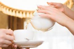 Het ontspannen van de vrouw drinkt thee De vrouwen gieten groene thee in een witte Kop royalty-vrije stock afbeeldingen