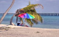 Het ontspannen van Florida stranden Royalty-vrije Stock Afbeelding