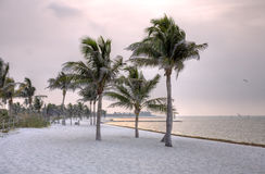 Het ontspannen van Key West stranden Stock Afbeeldingen