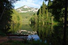 Het ontspannen vlek in Lacul Rosu stock afbeeldingen