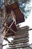 Het Ontspruiten brengt voor Jagers onder Stock Foto