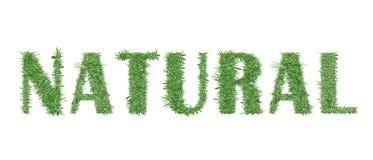 Het ontwerp van de ecologieaard naughty vector illustratie