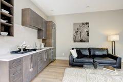 Het ontwerp van de familieruimte met nat barhoekje Stock Foto