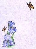 Het ontwerp van de kaart met decoratieve bloemen en vlinder royalty-vrije illustratie