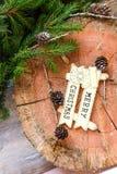 Het ontwerp van de Kerstmisgrens met behandelde sneeuw pinecones Stock Foto