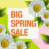Het ontwerp van de de lenteverkoop met kleurrijke bloemen, madeliefje en bladerenachtergrond voor de lente seizoengebonden bevord stock illustratie