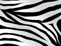 Het ontwerp van de tijger in zwarte Stock Fotografie