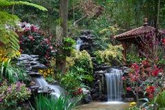 Het ontwerp van de tuin Royalty-vrije Stock Foto's