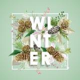 Het Ontwerp van de winterkerstmis in Vector De winterbloemen met Pijnbomen Stock Foto