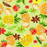 Het ontwerp van het fruit Stock Foto
