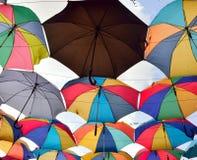 Het ontwerp van het parapludak Stock Afbeeldingen