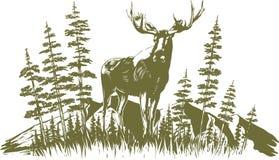 Het Ontwerp van houtdrukamerikaanse elanden royalty-vrije illustratie
