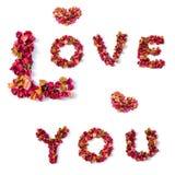 Het ontwerp van Liefde u verwoordt van bloembladeren Stock Foto's