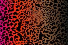 Het ontwerp van safaridromen stock illustratie