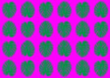 Het ontwerpachtergrond van de Monsteramanier Vector naadloos patroon met tropische bladeren De textuur van Monsterabladeren Wilde vector illustratie