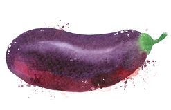 Het ontwerpmalplaatje van het aubergine vectorembleem groenten Stock Foto