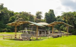 Het ontzagwekkende park van San Agustin Archeological, Huilla, Colombia royalty-vrije stock foto's