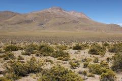 Het onvruchtbare landschap van Altiplano royalty-vrije stock afbeeldingen