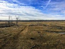 Het onvruchtbare weidelandschap van het Nationale Park van het Elandeneiland stock afbeelding